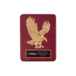 Photo of a Soaring Eagle Plaque.