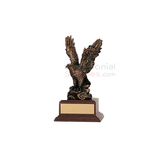 Front view of a Superior Management Eagle Award.