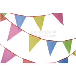 View of a Decorative Multi-Colored Pennant Banner.