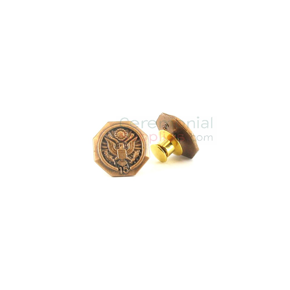 Bronze lapel pin with '15' text and American seal