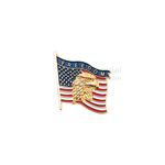 American flag with American Eagle with 'Freedom' text lapel pin