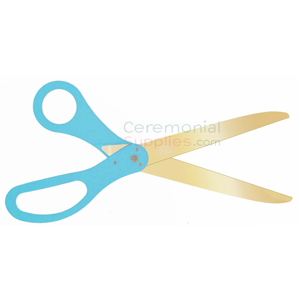 Image of golden blade scissors with teal handles.