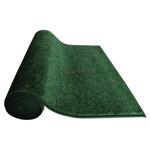 Green Carpet Deluxe